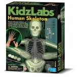 4M KIDZ LABS Fosfora skelets